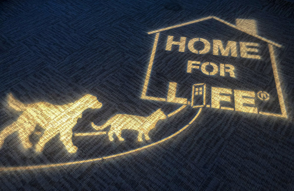 home for life gobo
