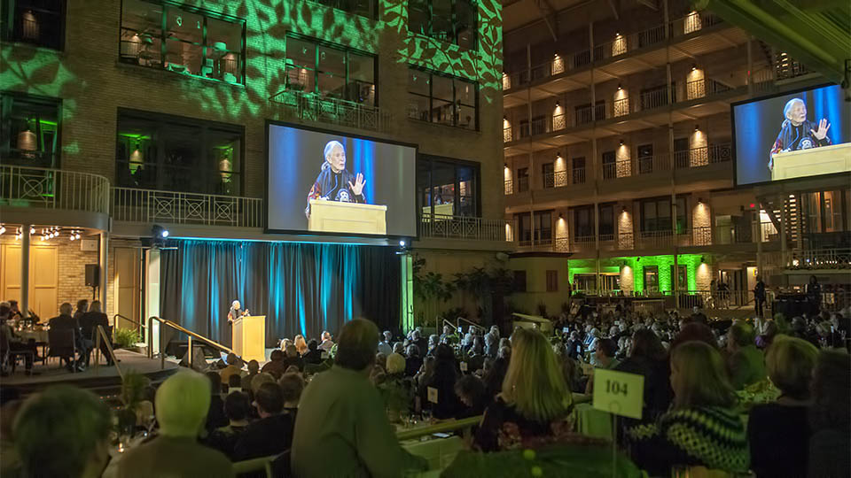jane-goodall-home-for-life